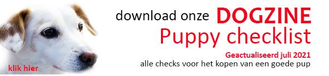 puppybanner