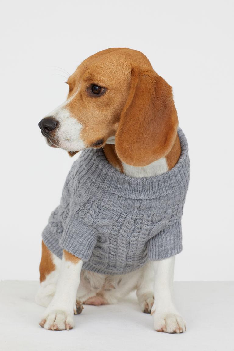 eb00d62a5c7 Onesies en kersttruien, de groei van de hondenkledingmarkt | Dogzine