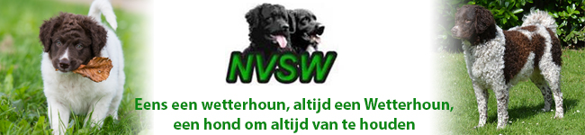nvsw advertentie