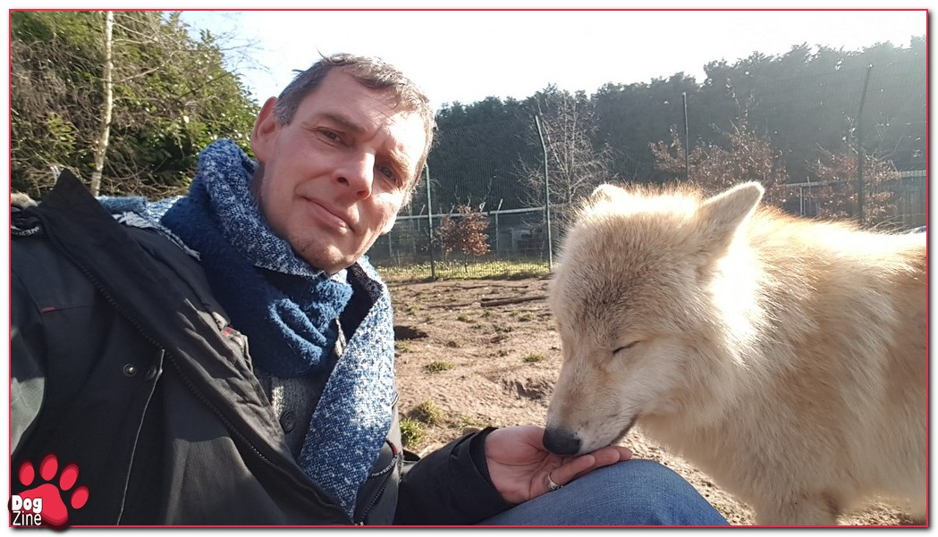 wolf en andre