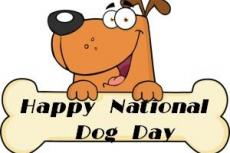26 augustus, National Dog Day