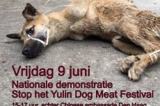 Embedded thumbnail for Stop Yulin protest The Hague 2017